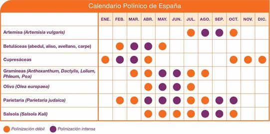 Calendaro Polinico Stallergenesgreer Com
